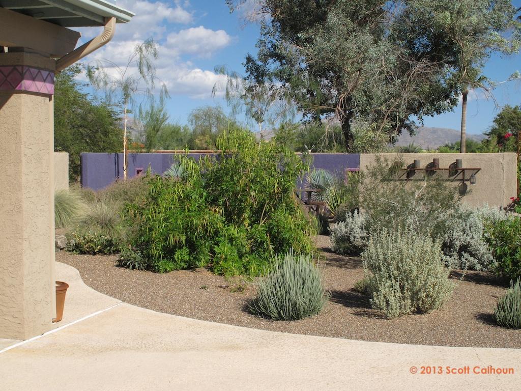 Garden Ridge Name Change 28 Images Tucson Botanical